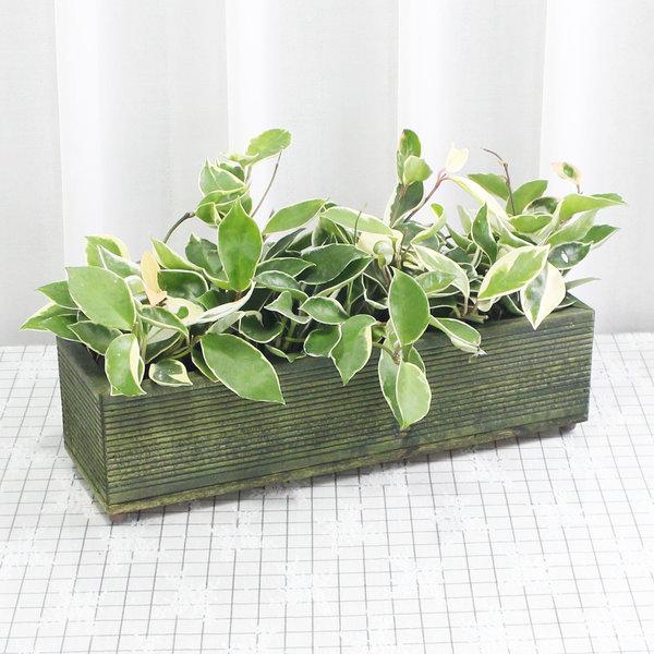 우드팟 나무화분 베란다 텃밭 390x130x100 올리브그린 상품이미지