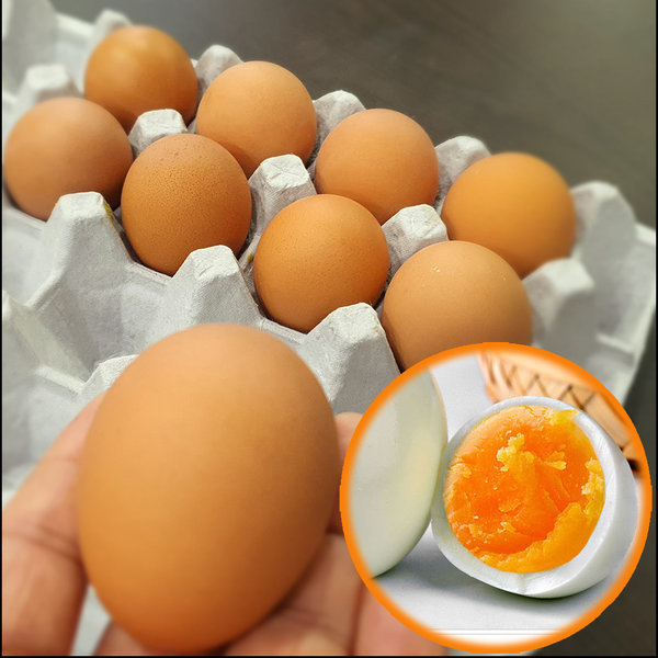 계란 반숙란 소프트 반숙계란 대란 30알 HACCP 상품이미지