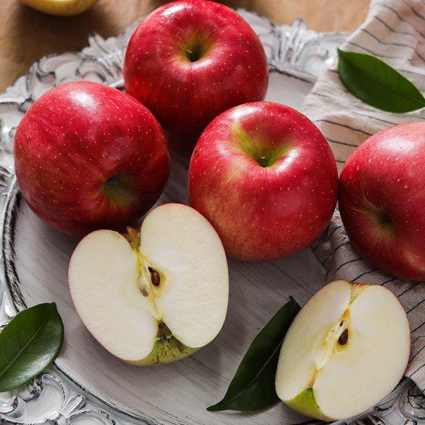 (신세계타임스퀘어점리빙관) 프레샤인  충주 알뜰 사과(흠과) 10kg(무작위 과수) 상품이미지