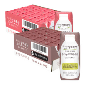 상하목장 유기농 딸기+코코아 우유125ml 48팩