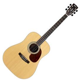 콜트 통기타 Earth100 (NAT/유광)