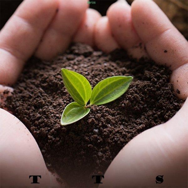 선물용  청정 강원도 유기농 3년근 도라지 배즙 30개 상품이미지