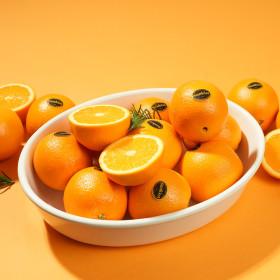 블랙라벨 고당도 오렌지 통관후 직송3kg(중과15입내외)