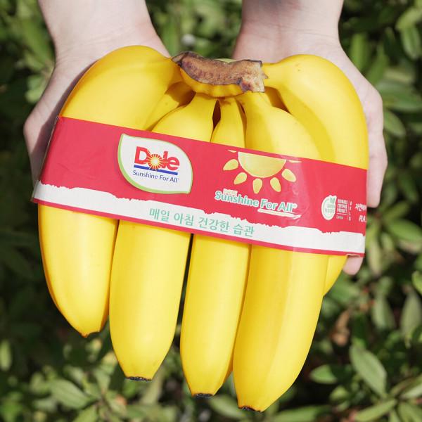 바나나 고당도 Dole 바나나 4다발 상품이미지