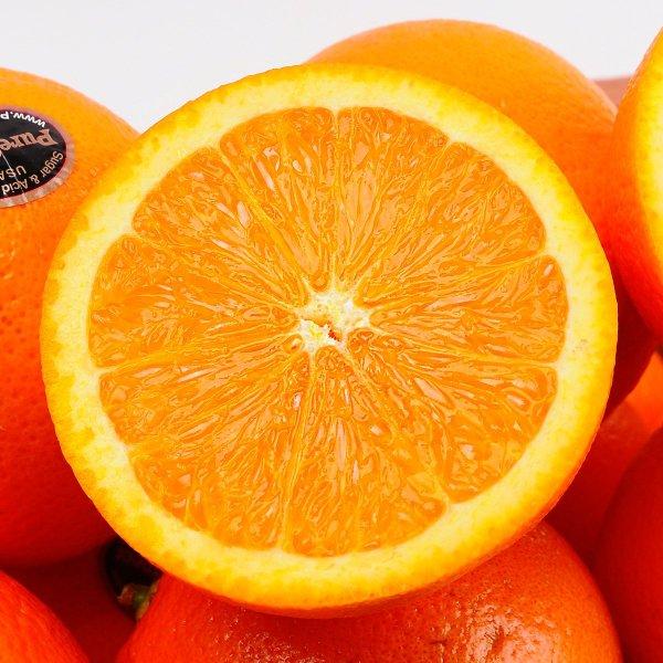 퓨어스펙 블랙라벨 오렌지 25과 개당 200g내외 상품이미지