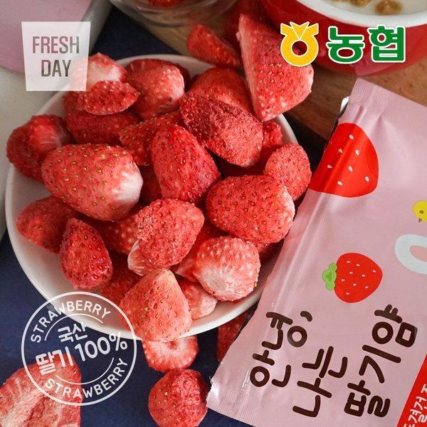 (프레시데이)  농협  생딸기그대로 동결건조 과일칩 나는딸기얌 30봉 상품이미지