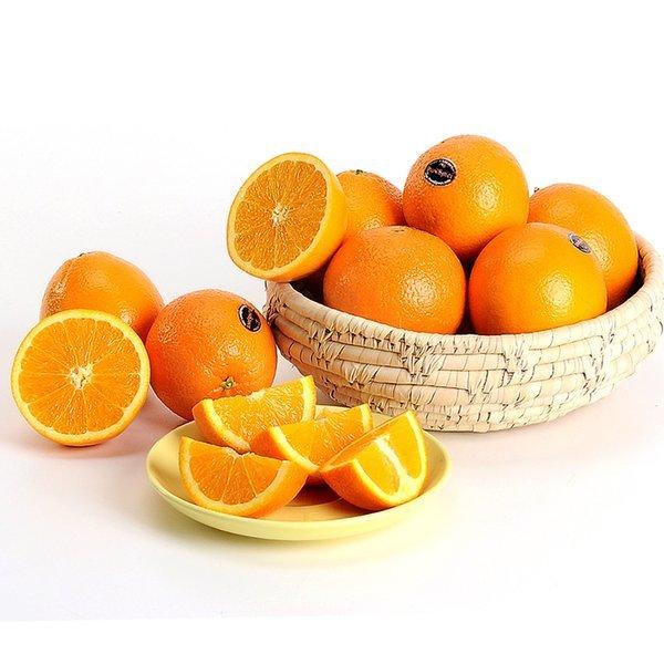 남아공 네이블 오렌지 50과 개당 230g내외 상품이미지