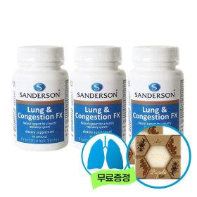 샌더슨 호흡기 폐건강 컨제스천 FX 60정 x 3개