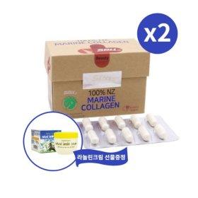 SPH 100% 뉴질랜드 마린콜라겐 60캡슐 x2개