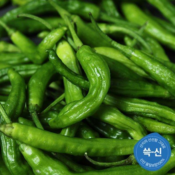 (쓱-신)  맛다름  품질보장 꽈리고추 150g내외/봉 상품이미지