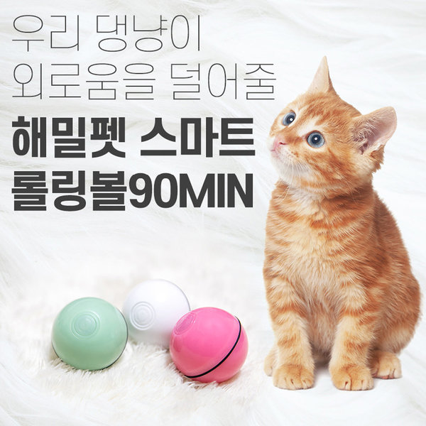 해밀펫 고양이 강아지 댕냥이 캣 장난감공 화이트 상품이미지