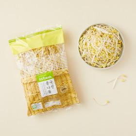국산 무농약 콩나물 500g