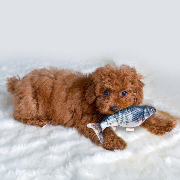 해밀펫 자동 고양이 강아지 애견장난감 피쉬 90MIN 상품이미지
