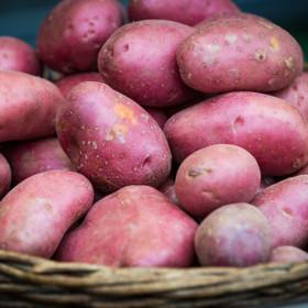 포슬포슬 서홍 감자 1.2kg(봉)