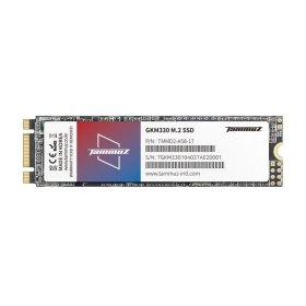(아이코다) 타무즈 GKM330 M.2 2280 SSD (256GB)