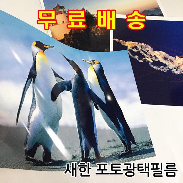 잉크젯포토필름 광택필름 포토용지 전문가용 A4 10매 상품이미지
