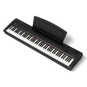 다이나톤 포터블 디지털피아노 DTP-1 블랙 택배발송