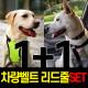 1+1 강아지목줄 안전벨트 풀세트 레드 M/자동리드줄