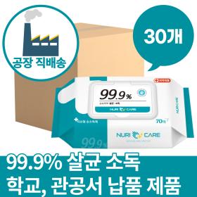 클린케어 손소독 세정 살균 제균 소독티슈 70매 30개