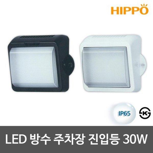 LED주차장진입등 30W LED방수등 LED벽등 상품이미지