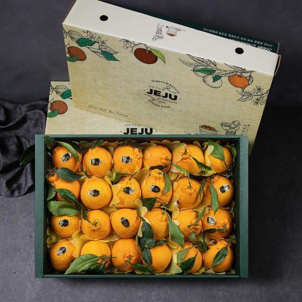 제주 한라봉 선물세트 4.5kg (실중량/17과내외) 상품이미지