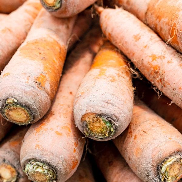 국내산 햇 당근  쥬스용 생식용 흙당근 특 5kg 상품이미지