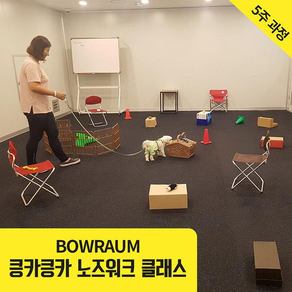 서울  바우라움 킁카킁카 반려견 노즈워크 클래스 상품이미지
