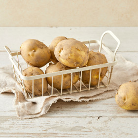 신선특별시 감자 1.2kg(봉)