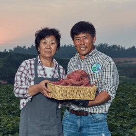 영암 꿀달고구마 무농약 3kg(긴특긴상) 30년고구마재배