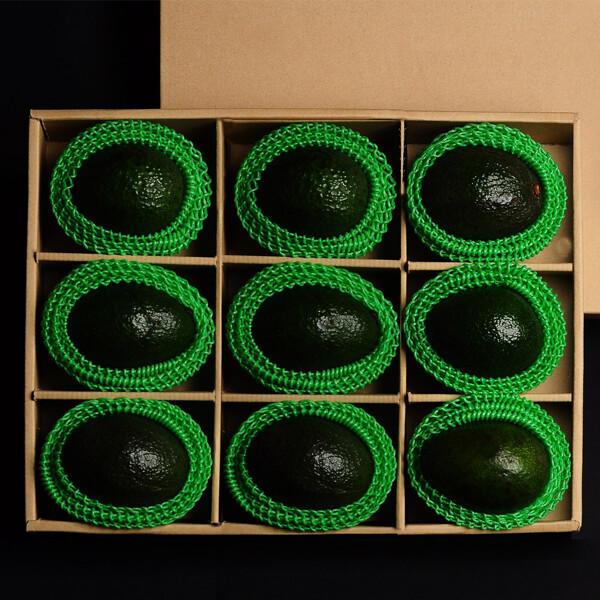 (현대Hmall) 누리원 골드콜라보선물세트 아보카도9과/과수별개별포장 상품이미지