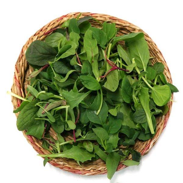 (남촌)  오창농협  친환경 모듬 어린잎 채소 50g 상품이미지