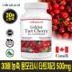 30배 농축 몽모라시 타트체리 500mg 4개월 캐나다생산