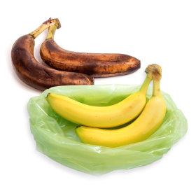 에코백 음식부패방지 비닐백M 보관기간늘리고 식비절약