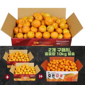 설탕맛 노지감귤 4kg(2S~M) 2개구매시 10kg발송