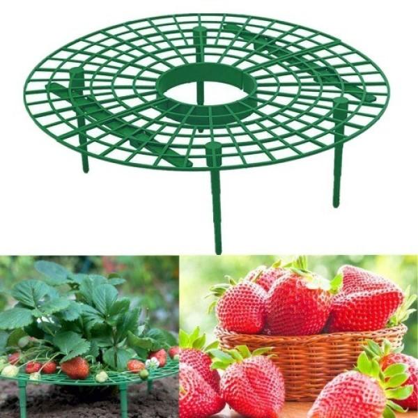 병충해 예방 딸기 재배 받침대 재배기 화분 트레이 상품이미지