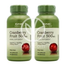 2개 지엔씨 크랜베리 Cranberry 크렌베리 500 mg 100 캡슐