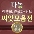 야생화씨앗 허브씨앗모음전/잔디씨앗/꽃씨앗/화훼씨앗