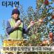 경북 영양 꿀부사 사과 가정용 5kg 10~11과 11과 내외