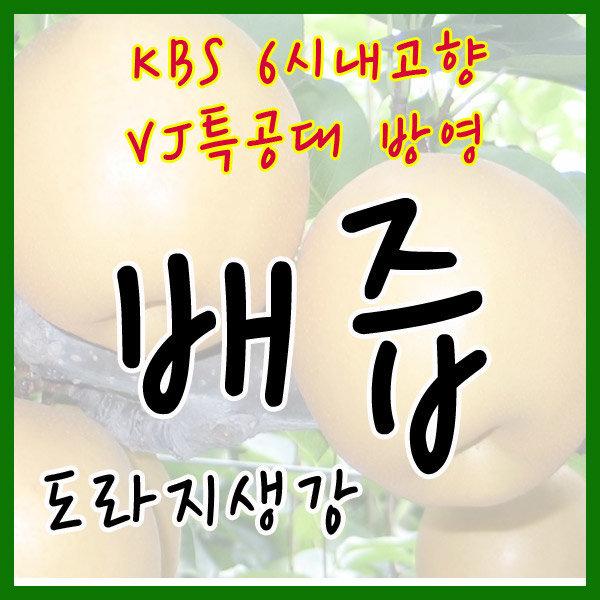 배즙/도라지배즙/도라지생강배즙/배엑기스/아이음료 상품이미지