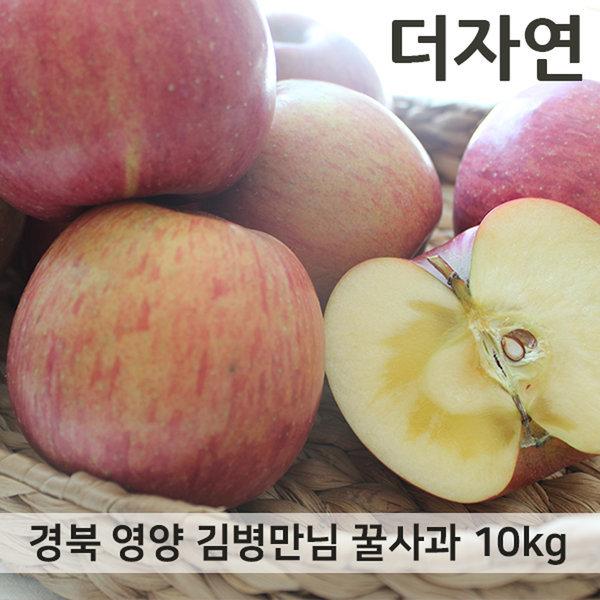 경북 영양 김병만님의 꿀부사 사과 최상품 10kg 54내외 상품이미지