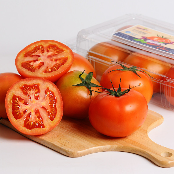 단마토 토망고 스테비아 방울토마토 500g 1팩 상품이미지