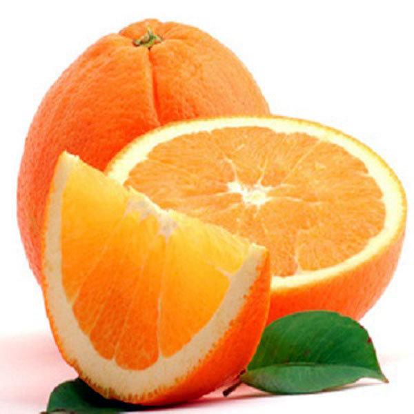 오렌지4kg17알내외(대과/알당230g) 상품이미지