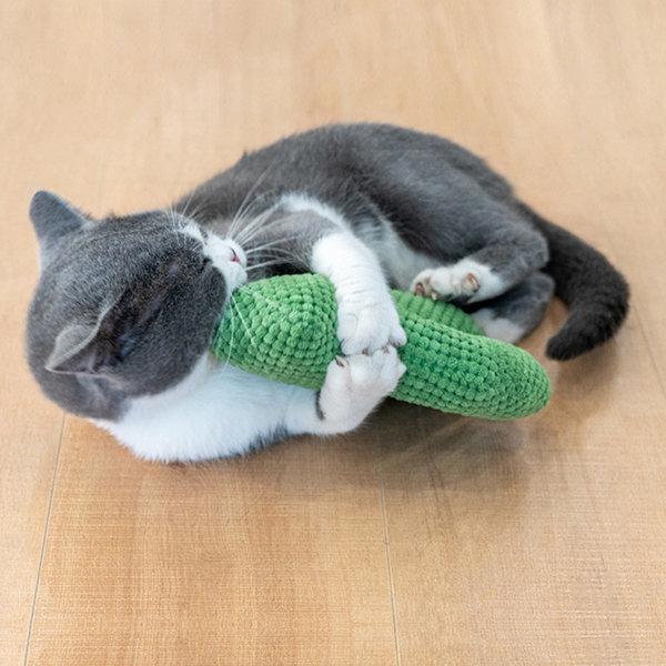 묘심 고양이장난감 캣닙 선인장인형 폭신폭신 발차기용 상품이미지