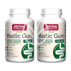 2개 매스틱 검 메스틱 Mastic Gum 1000 mg 60 베지 캡슐 Jarrow 빠른직구