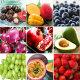 냉동과일 딸기(중국산)1kg /냉동과일20종