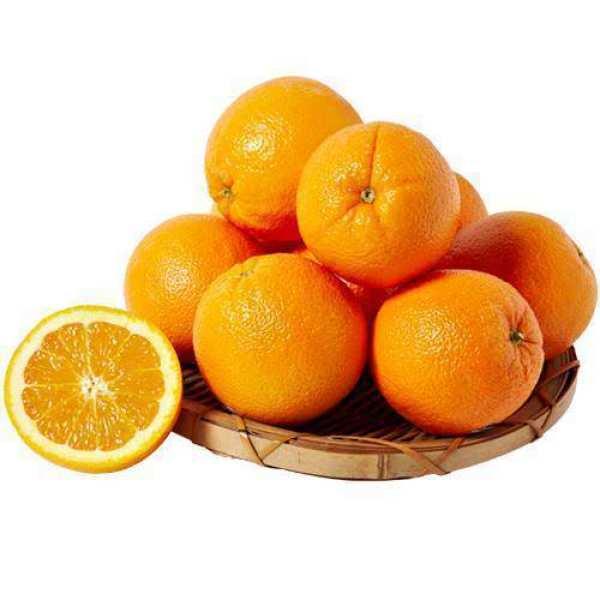 미국)썬키스트 오렌지 10~12입(봉) 상품이미지