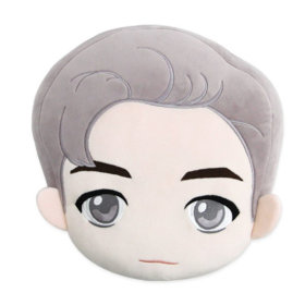 BTS/Tiny TAN/Face/Cushion Doll/-