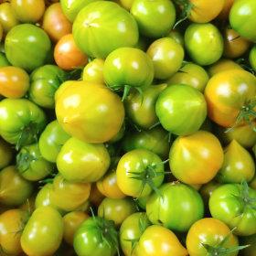 생생스토리 토마토 대저 토마토 2.5kg 소과