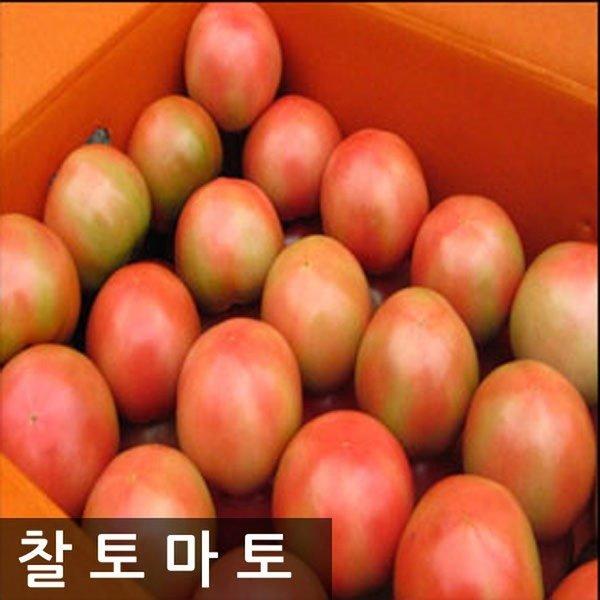 명품찰토마토 10kg(3번)중과 상품이미지
