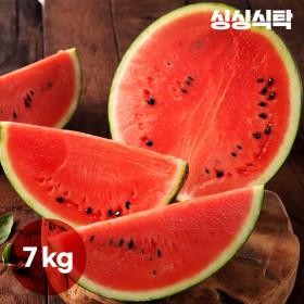 싱싱식탁 고당도 원두막 꿀수박(7kg) 가락시장 직배송